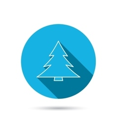 Christmas tree icon forest or nature sign vector