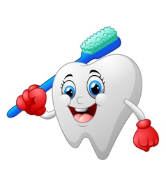 Smiling healthy white tooth cartoon character vector