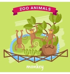 Zoo animal monkey vector