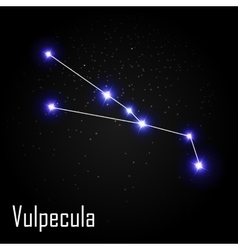 Vulpecula constellation with beautiful bright vector
