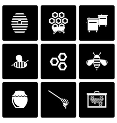 black honey icon set vector image vector image