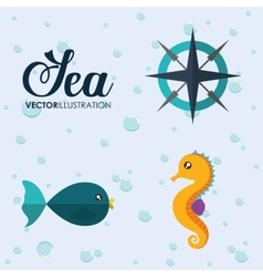 fish and sea horse icon Sea animal cartoon vector image vector image