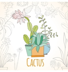 Invitation card of cactus in pots vector