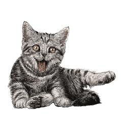 Cat 07 vector image vector image