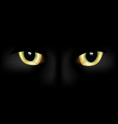 Cat eyes vector