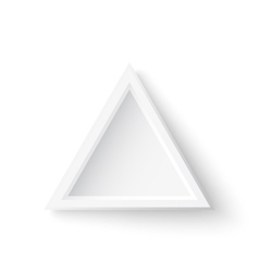 Realistic triangle banner isolated on white vector image vector image