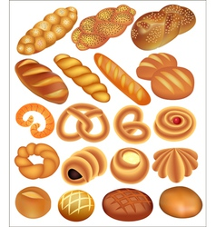 set of bread wheat vector image vector image