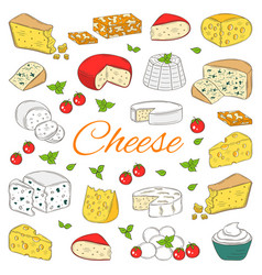 Set of various types of cheese hand drawn vector