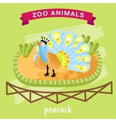 Zoo animal peacock vector