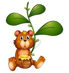 A bear near a vine plant vector image vector image