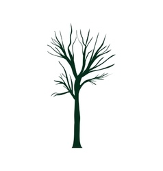 dry tree plant vector image