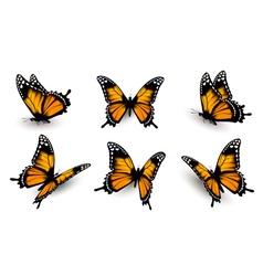 Six butterflies set vector image