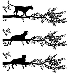 Tree leopard vector