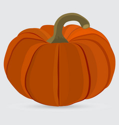halloween pumpkin on a white background vector image vector image
