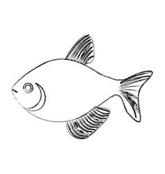Monochrome sketch with sea fish vector