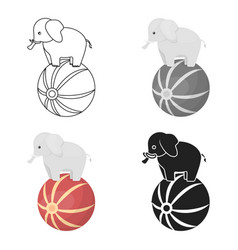 Circus elephant icon in cartoon style isolated on vector
