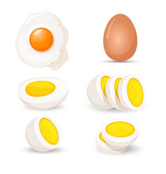 boiled eggs whole and half fresh and fried vector image