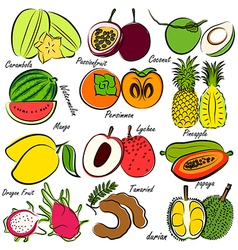 Fruits set3 vector