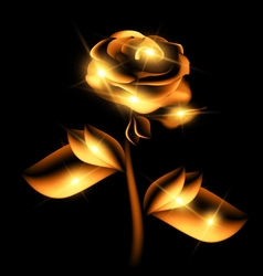 Darkness and golden fairy flower vector