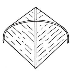 Java kite vintage vector