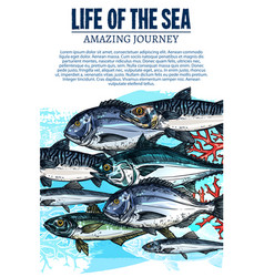 Poster of sea fish sketch ocean fishes life vector
