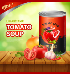 tomato soup packshot background vector image