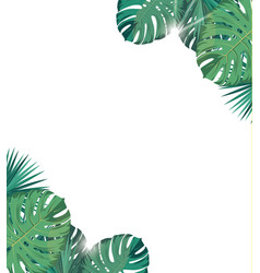 Tropic leaves with sunshine tropic background vector