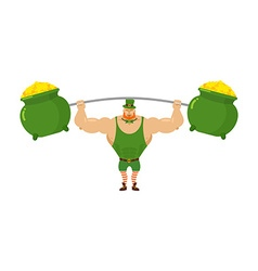 Strong leprechaun holds barbell and pot of full vector image