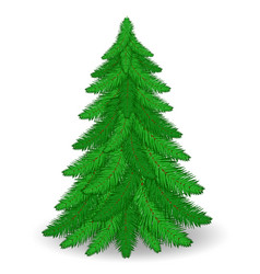 christmas tree stock vector image vector image