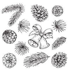 Collection of pine cones and christmas bells vector