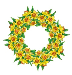 Narcissus wreath vector