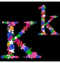 k letter vector image