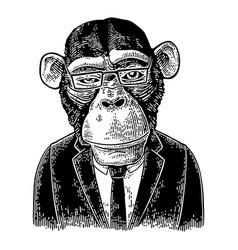 monkey businessman in suit tie rectangular vector image