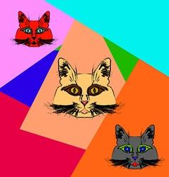 Multi-colored muzzle cats vector image vector image