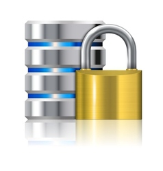 Padlock Protects Database vector image