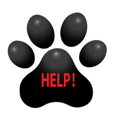 pet animal paw care logo template vector image