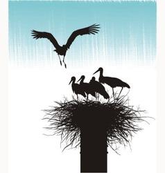Family of storks in nest vector image