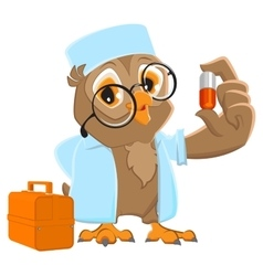 Owl doctor holding pill owl ambulance in white vector