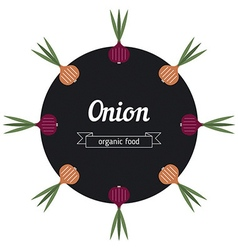 Onion vegetables vector