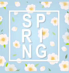 Cherry flower spring banner vector