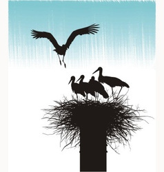Family of storks in nest vector image vector image