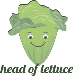 Head of lettuce vector