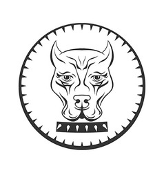 Pit bull terrier logo Dod face with collar label vector image