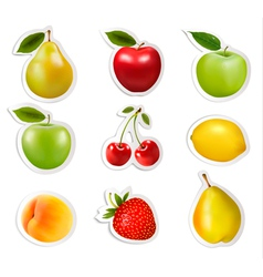 Big collection of labels with fruits vector