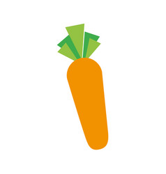 carrot vegetable fresh supermarket food design vector image vector image