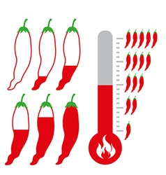 Level of Hot and spicy Chili Pepper vector image vector image