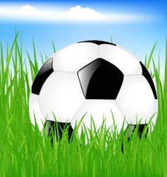 Classic soccer ball in grass vector
