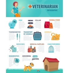 Colorful vet infographic concept vector