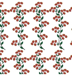 Branches red berries natural seamless background vector
