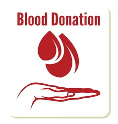 blood donation2 vector image
